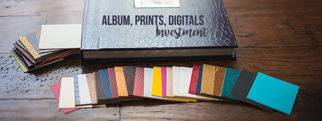 albumsprints-investment