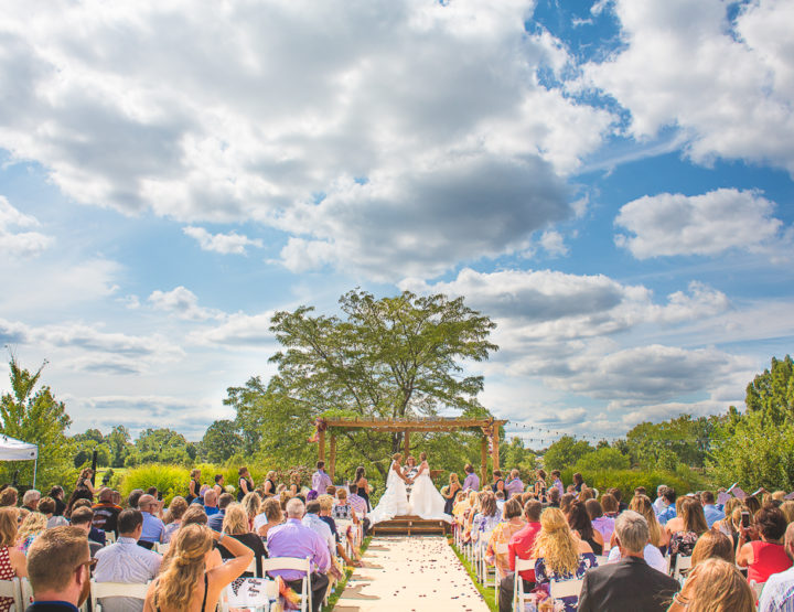 St. Louis Wedding Photography   Highlands   Forest Park   the Grove