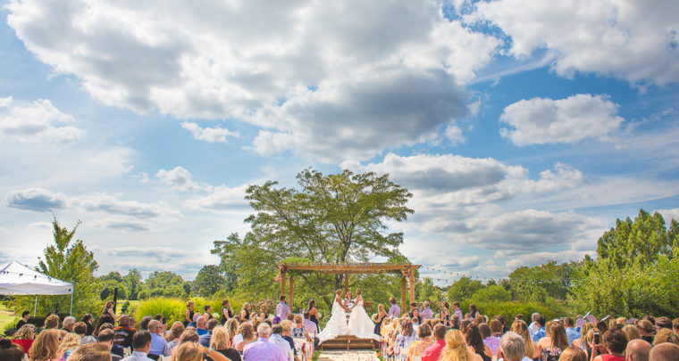 St. Louis Wedding Photography | Highlands | Forest Park | the Grove